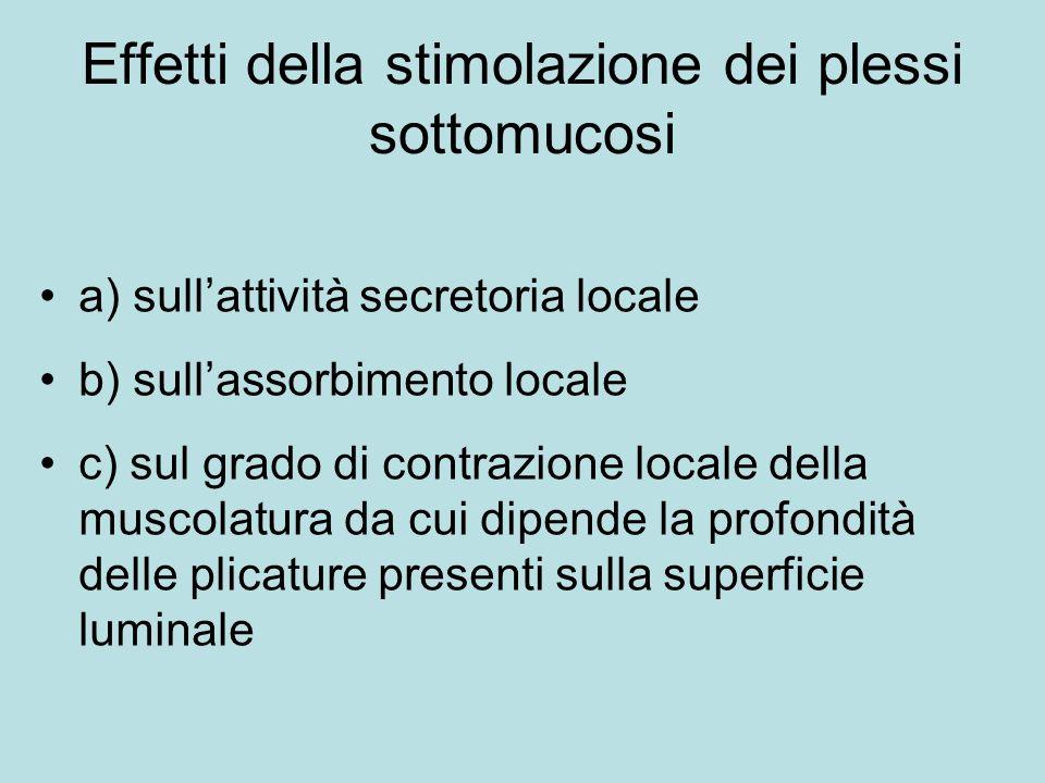 Effetti della stimolazione dei plessi sottomucosi a) sullattività secretoria locale b) sullassorbimento locale c) sul grado di contrazione locale dell