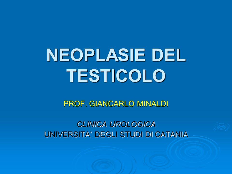 NEOPLASIE DEL TESTICOLO PROF. GIANCARLO MINALDI CLINICA UROLOGICA UNIVERSITA DEGLI STUDI DI CATANIA