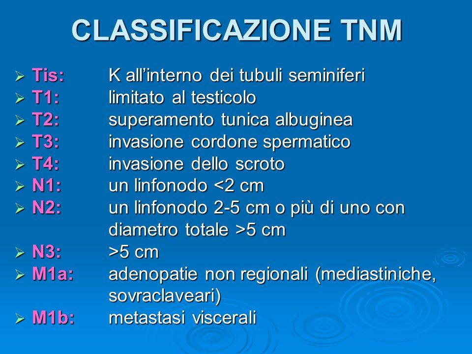 CLASSIFICAZIONE TNM Tis:K allinterno dei tubuli seminiferi Tis:K allinterno dei tubuli seminiferi T1: limitato al testicolo T1: limitato al testicolo