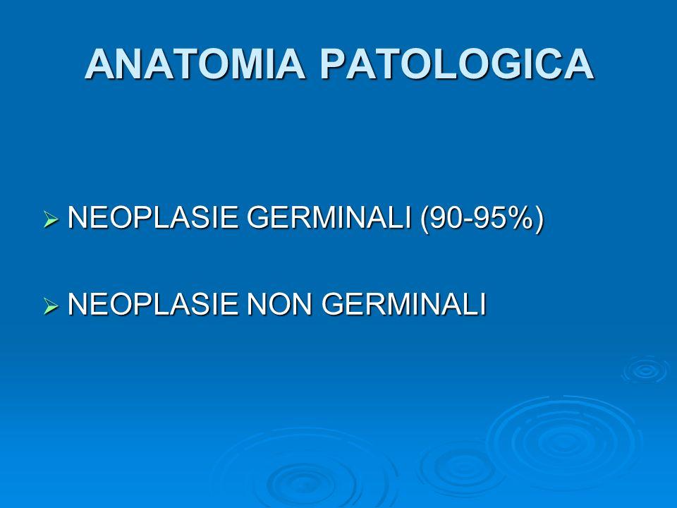 NEOPLASIE GERMINALI Neoplasie seminomatose (30-40%) Neoplasie seminomatose (30-40%) Seminoma tipico o classico (80%) Seminoma tipico o classico (80%) Seminoma anaplastico a cellule sinciziotrofoblastiche (10%) variante più aggressiva Seminoma anaplastico a cellule sinciziotrofoblastiche (10%) variante più aggressiva Seminoma spermatocitico (2-12%) età > 50 anni Seminoma spermatocitico (2-12%) età > 50 anni