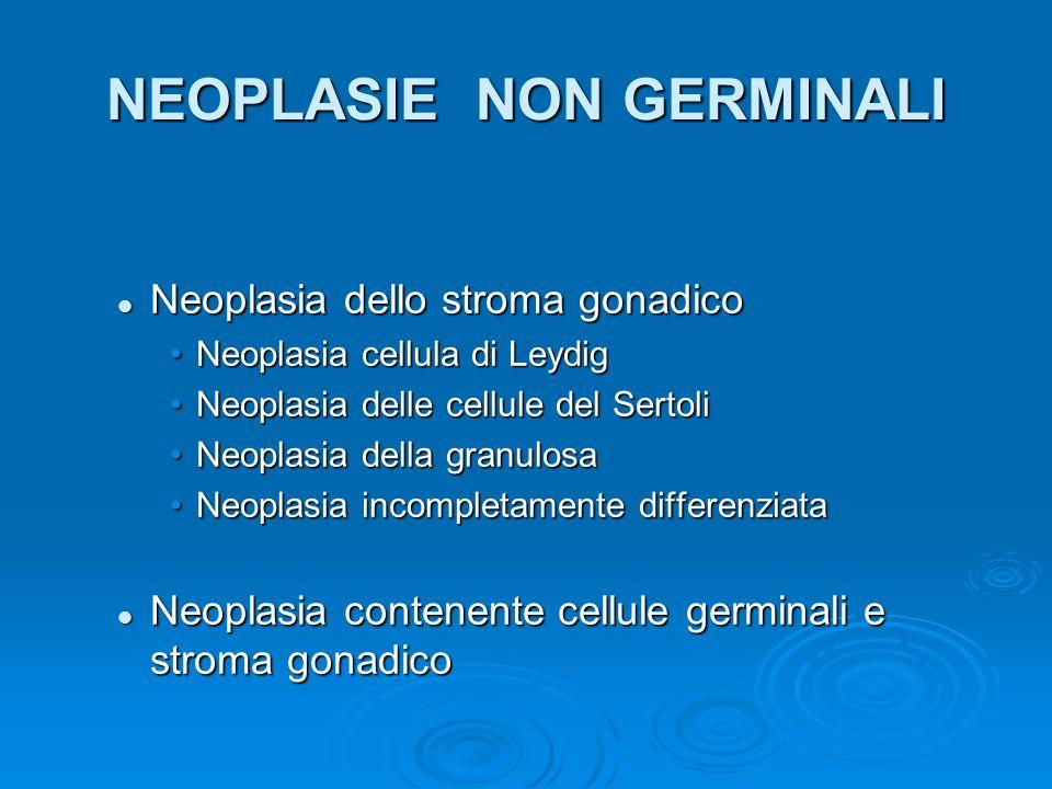 NEOPLASIE NON GERMINALI Neoplasia degli annessi testicolari e dei tessuti di sostegno Neoplasia degli annessi testicolari e dei tessuti di sostegno Rabdomiosarcoma ed altri sarcomi Rabdomiosarcoma ed altri sarcomi Benigni: lipoma, fibroma Benigni: lipoma, fibroma Neoplasie a partenza dallepitelio celomatico Neoplasie a partenza dallepitelio celomatico Metastasi testicolari Metastasi testicolari Neoplasie solide: polmone, prostata, app.