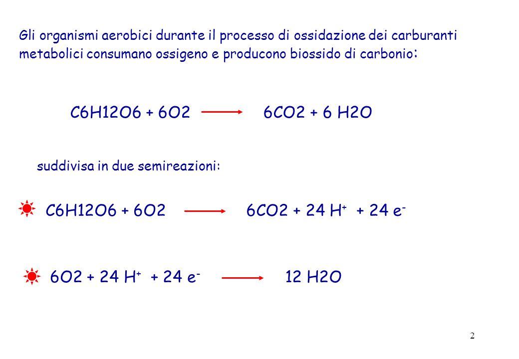 2 Gli organismi aerobici durante il processo di ossidazione dei carburanti metabolici consumano ossigeno e producono biossido di carbonio : C6H12O6 +