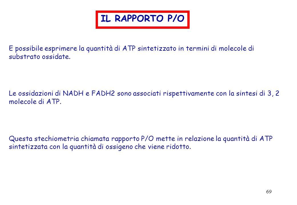 69 IL RAPPORTO P/O E possibile esprimere la quantità di ATP sintetizzato in termini di molecole di substrato ossidate. Le ossidazioni di NADH e FADH2