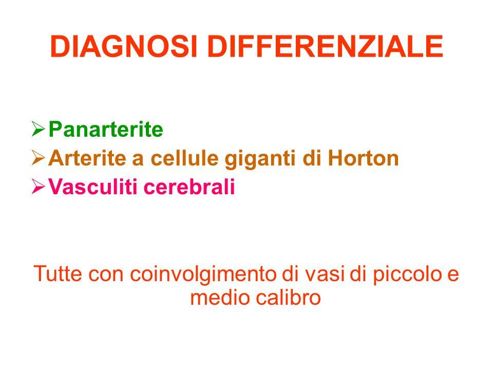 DIAGNOSI DIFFERENZIALE Panarterite Arterite a cellule giganti di Horton Vasculiti cerebrali Tutte con coinvolgimento di vasi di piccolo e medio calibr