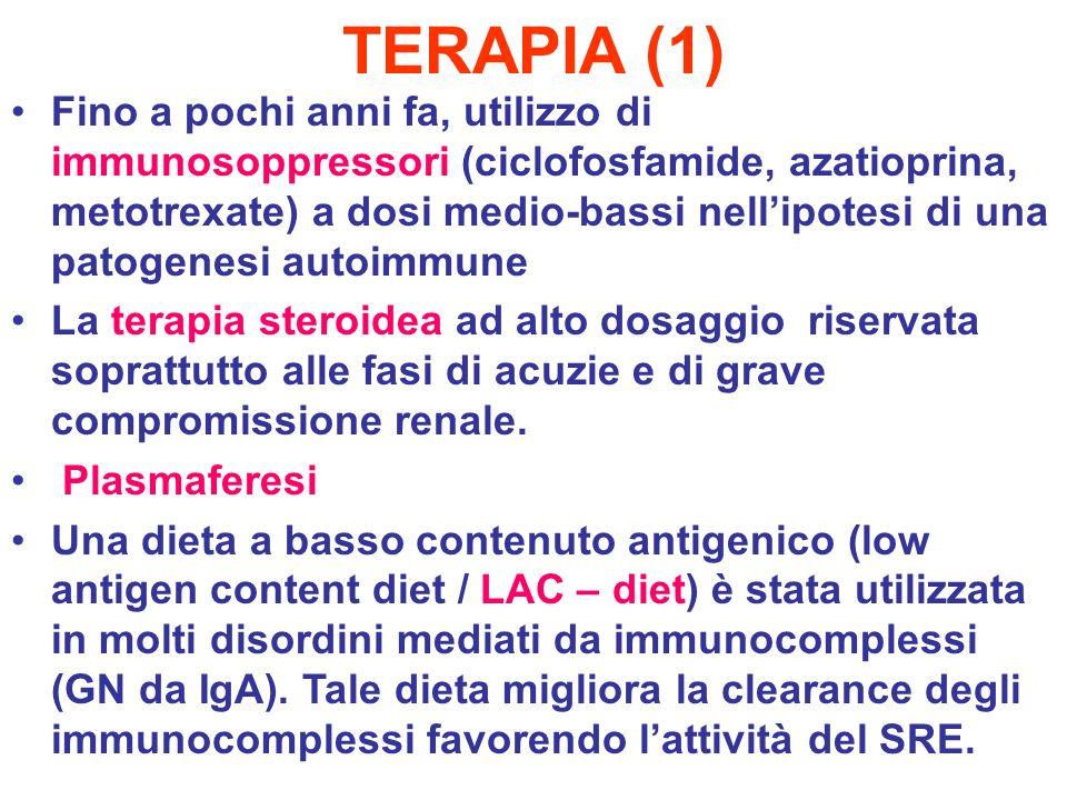 TERAPIA (1) Fino a pochi anni fa, utilizzo di immunosoppressori (ciclofosfamide, azatioprina, metotrexate) a dosi medio-bassi nellipotesi di una patog