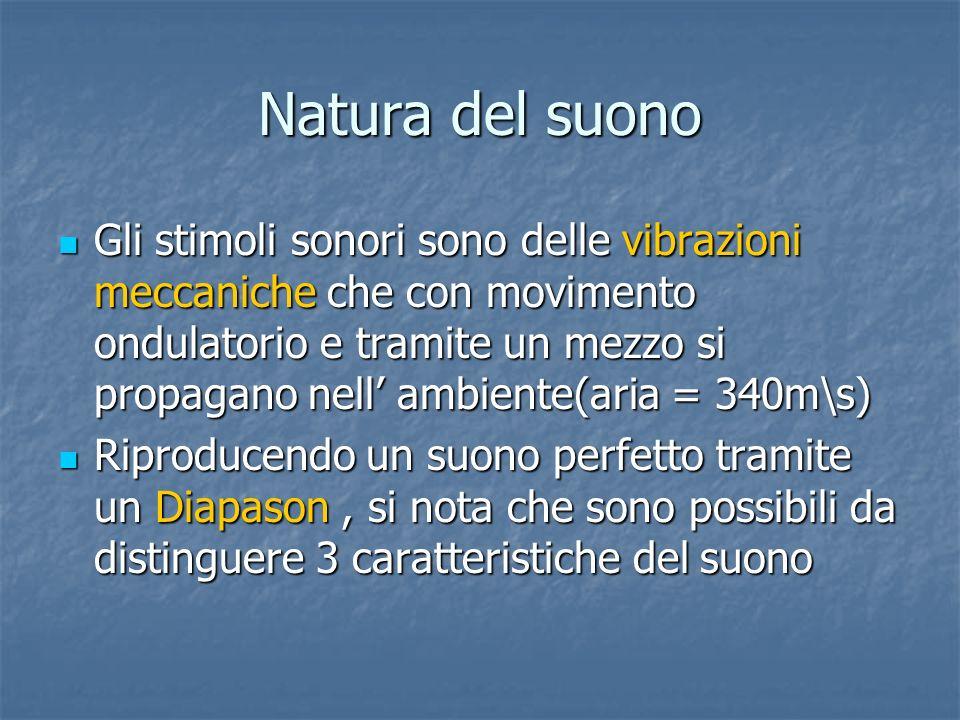 Natura del suono Gli stimoli sonori sono delle vibrazioni meccaniche che con movimento ondulatorio e tramite un mezzo si propagano nell ambiente(aria