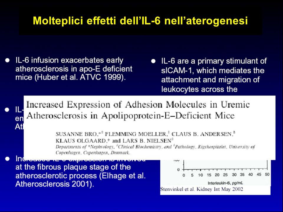 Molteplici effetti dellIL-6 nellaterogenesi