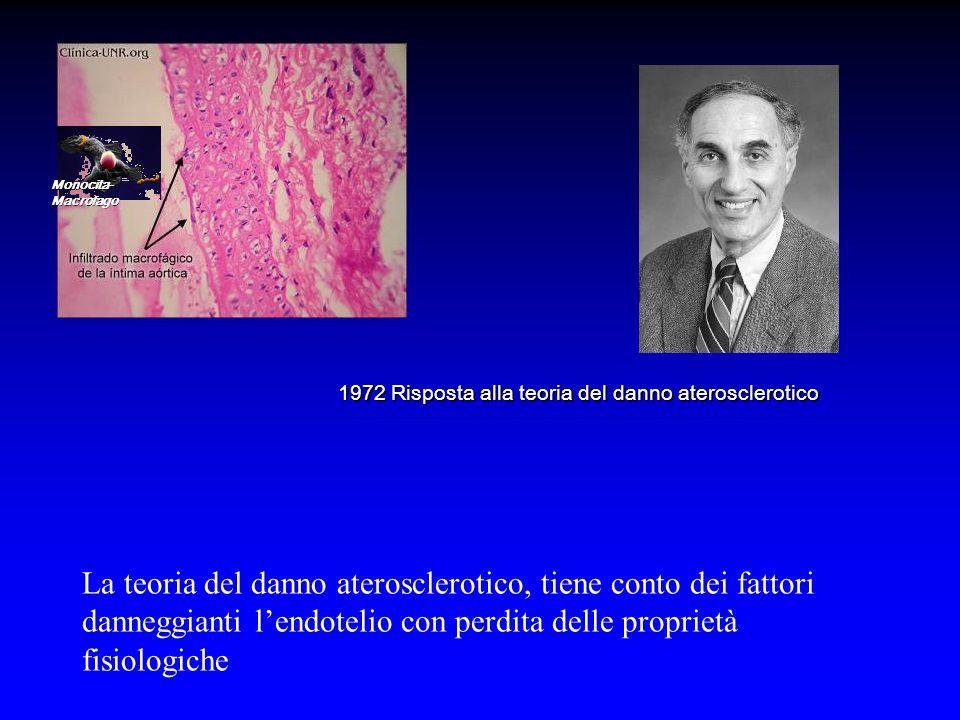 Monocita- Macrofago 1972 Risposta alla teoria del danno aterosclerotico La teoria del danno aterosclerotico, tiene conto dei fattori danneggianti lendotelio con perdita delle proprietà fisiologiche