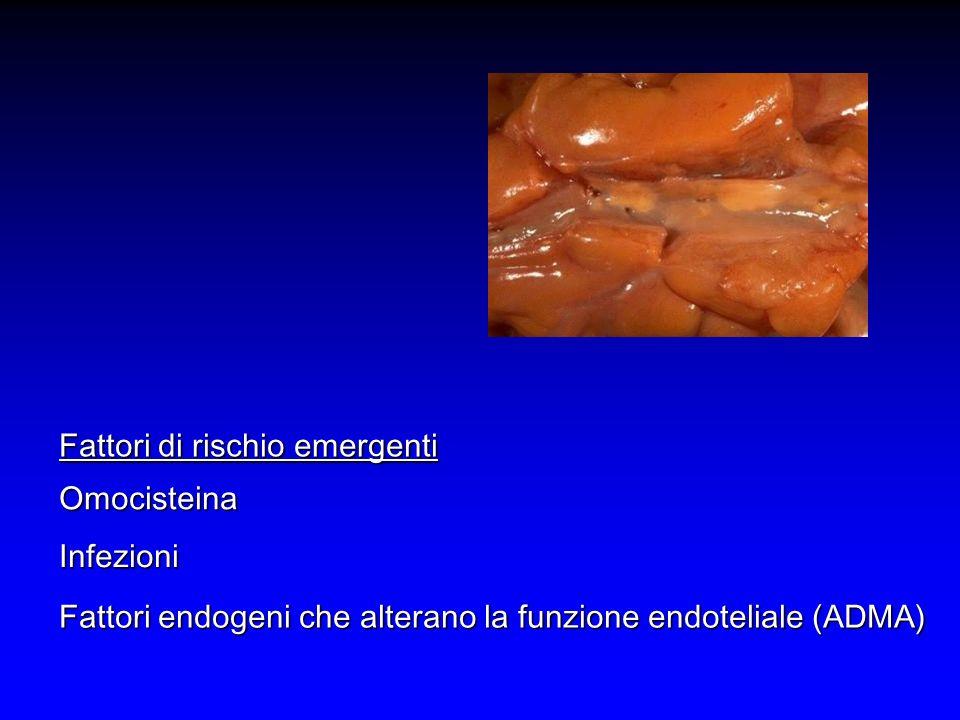 Omocisteina Infezioni Fattori endogeni che alterano la funzione endoteliale (ADMA) Fattori di rischio emergenti