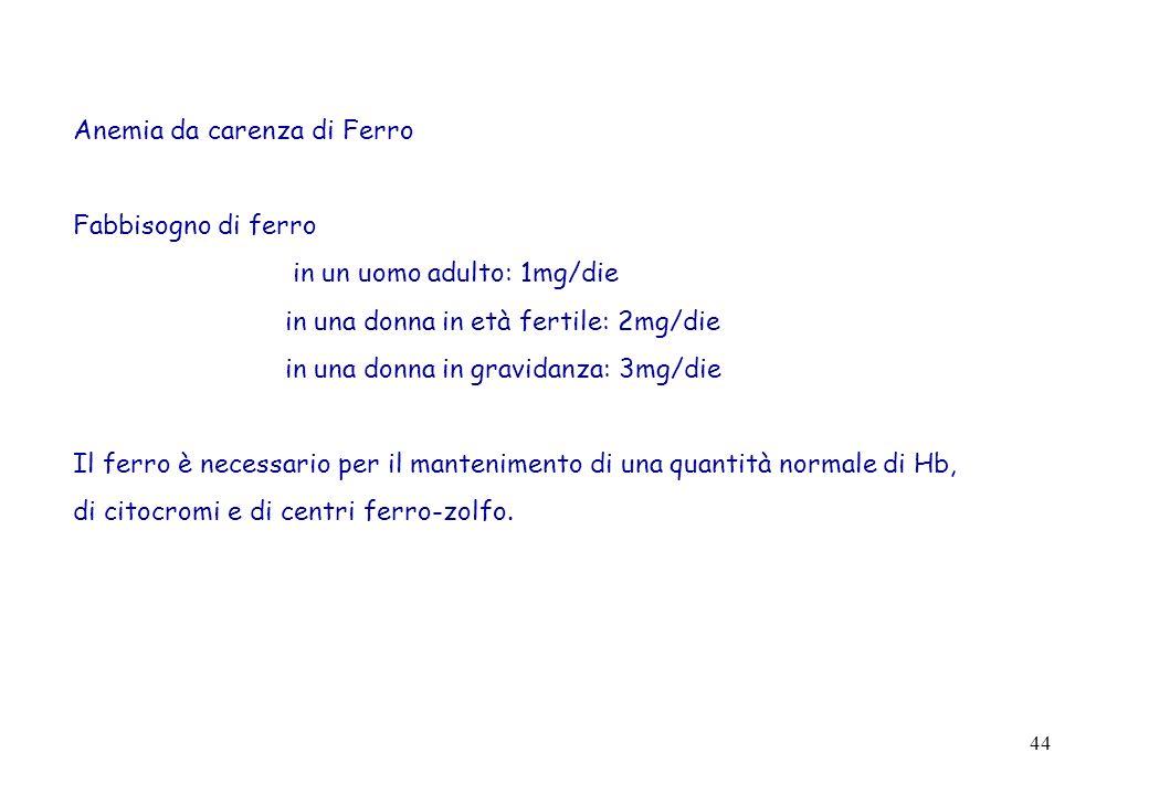 44 Anemia da carenza di Ferro Fabbisogno di ferro in un uomo adulto: 1mg/die in una donna in età fertile: 2mg/die in una donna in gravidanza: 3mg/die