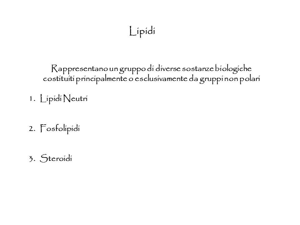 Lipidi Rappresentano un gruppo di diverse sostanze biologiche costituiti principalmente o esclusivamente da gruppi non polari 1.Lipidi Neutri 2.Fosfol