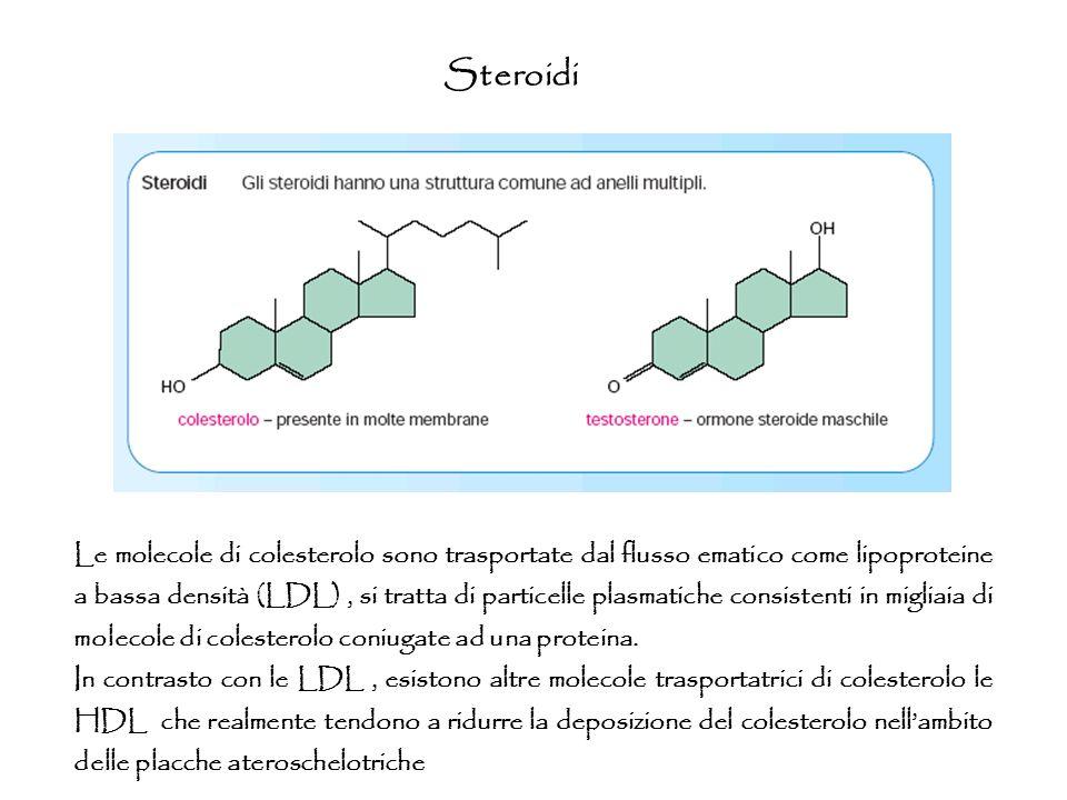 Steroidi Le molecole di colesterolo sono trasportate dal flusso ematico come lipoproteine a bassa densità (LDL), si tratta di particelle plasmatiche c