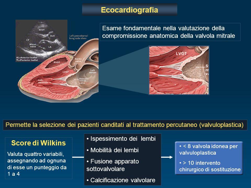 Ecocardiografia Esame fondamentale nella valutazione della compromissione anatomica della valvola mitrale Permette la selezione dei pazienti canditati