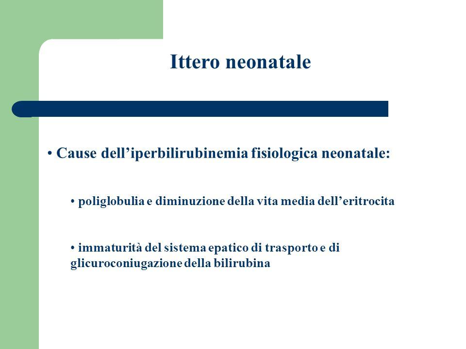 Ittero neonatale Cause delliperbilirubinemia fisiologica neonatale: poliglobulia e diminuzione della vita media delleritrocita immaturità del sistema