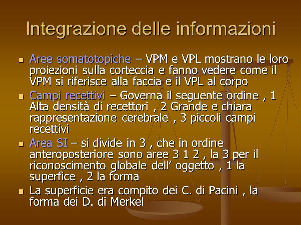 Integrazione delle informazioni Aree somatotopiche – VPM e VPL mostrano le loro proiezioni sulla corteccia e fanno vedere come il VPM si riferisce all