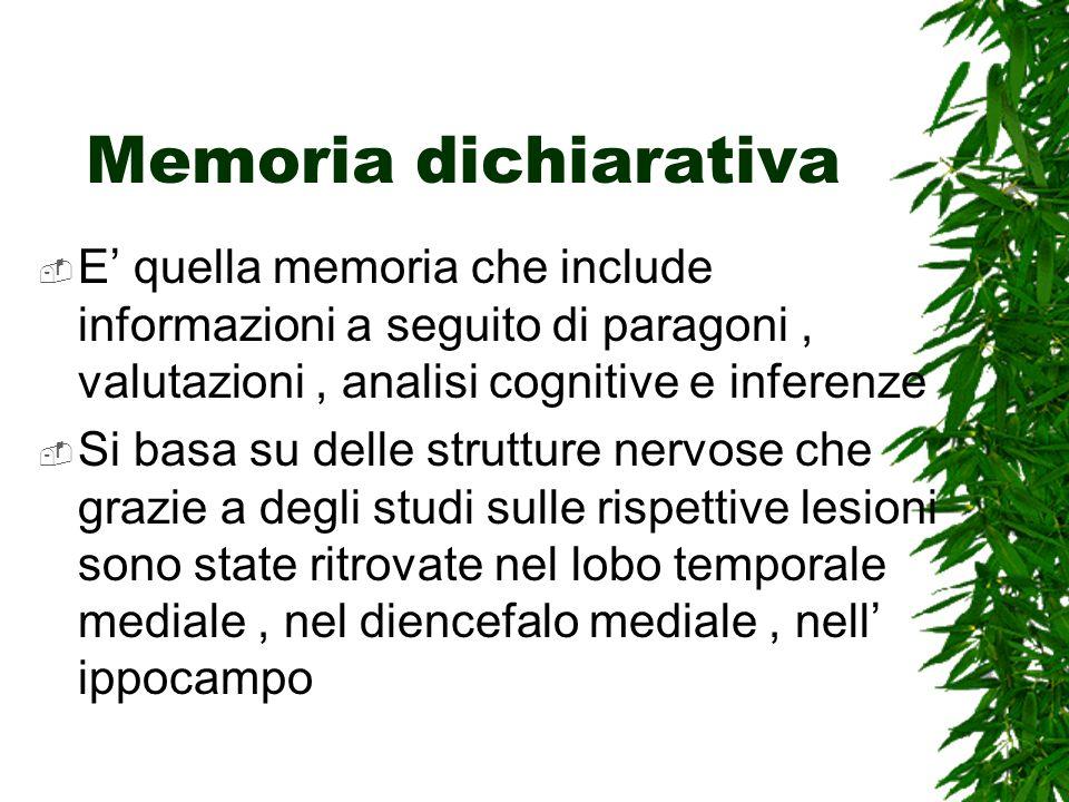 Memoria dichiarativa E quella memoria che include informazioni a seguito di paragoni, valutazioni, analisi cognitive e inferenze Si basa su delle strutture nervose che grazie a degli studi sulle rispettive lesioni sono state ritrovate nel lobo temporale mediale, nel diencefalo mediale, nell ippocampo