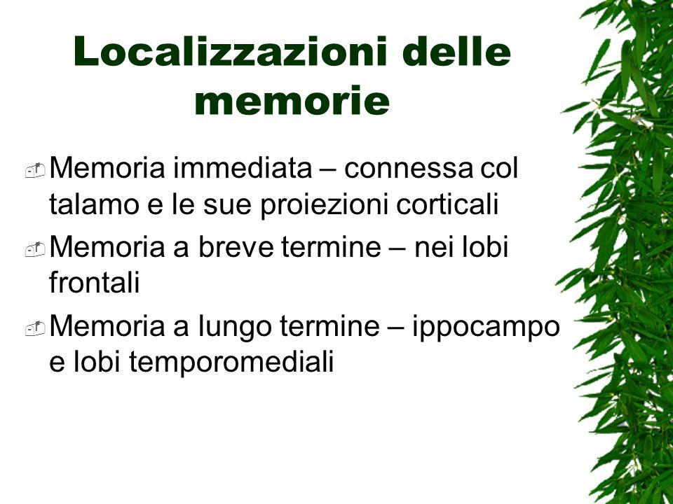 Localizzazioni delle memorie Memoria immediata – connessa col talamo e le sue proiezioni corticali Memoria a breve termine – nei lobi frontali Memoria a lungo termine – ippocampo e lobi temporomediali