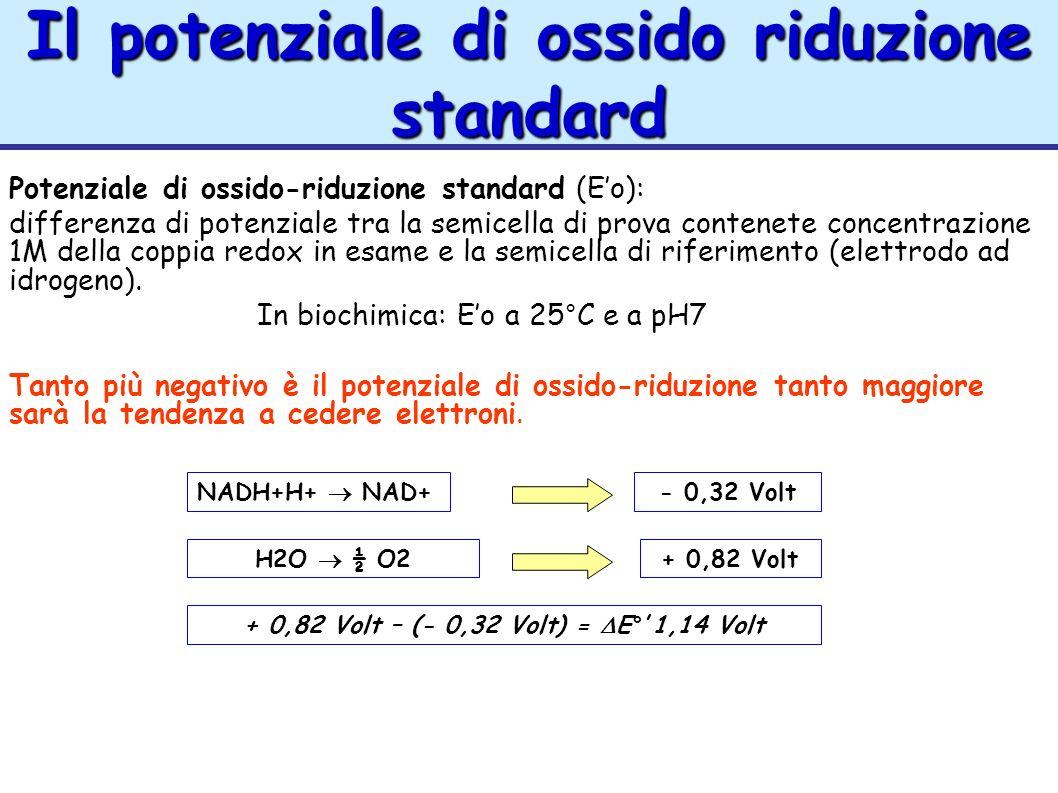 Il potenziale di ossido riduzione standard Potenziale di ossido-riduzione standard (Eo): differenza di potenziale tra la semicella di prova contenete