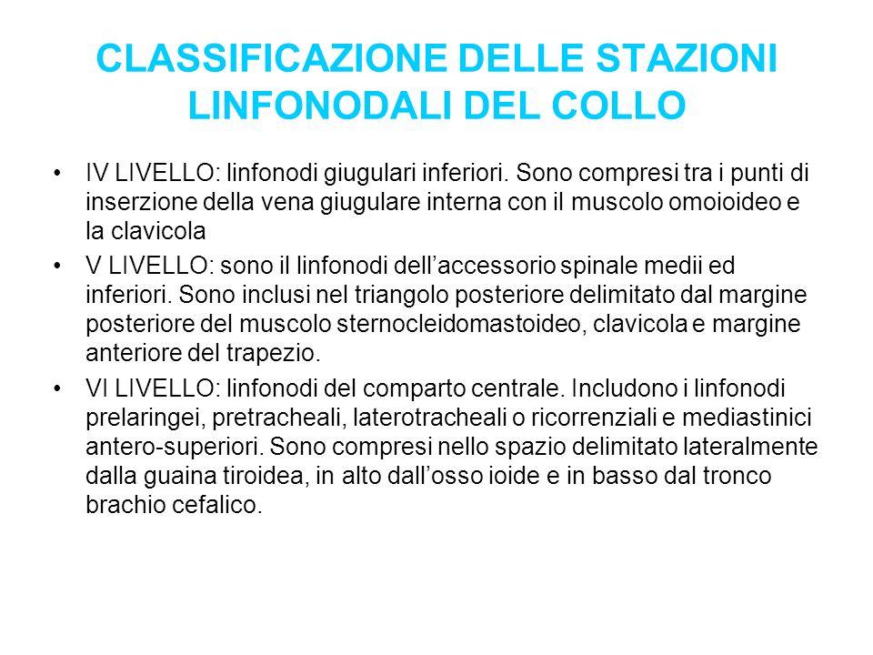 CLASSIFICAZIONE DELLE STAZIONI LINFONODALI DEL COLLO IV LIVELLO: linfonodi giugulari inferiori. Sono compresi tra i punti di inserzione della vena giu