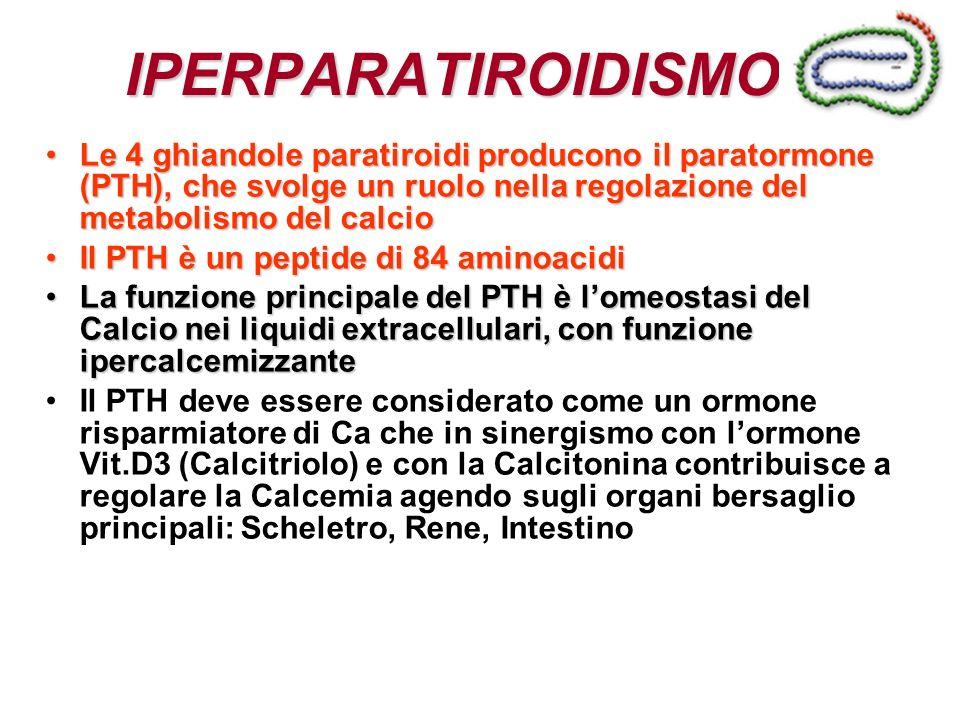 IPERPARATIROIDISMO Le 4 ghiandole paratiroidi producono il paratormone (PTH), che svolge un ruolo nella regolazione del metabolismo del calcioLe 4 ghi