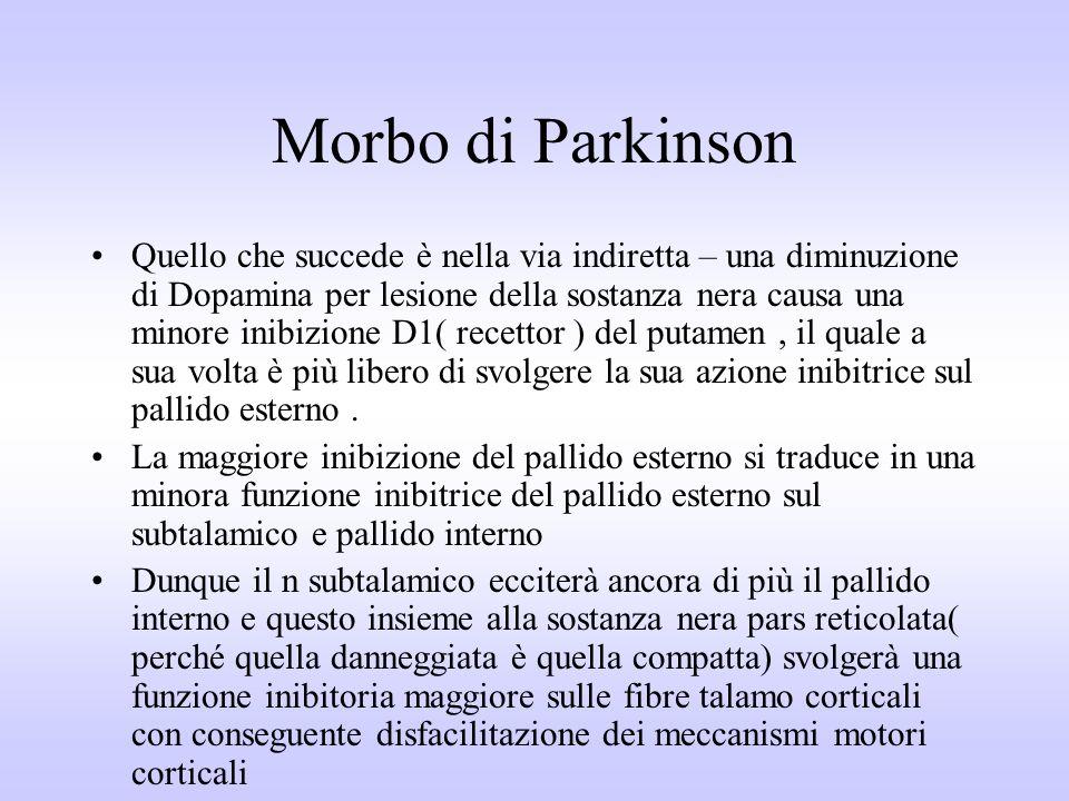 Morbo di Parkinson Quello che succede è nella via indiretta – una diminuzione di Dopamina per lesione della sostanza nera causa una minore inibizione