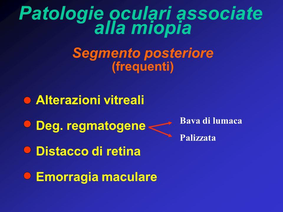 Patologie oculari associate alla miopia Segmento posteriore (frequenti) Alterazioni vitreali Deg. regmatogene Distacco di retina Emorragia maculare Ba