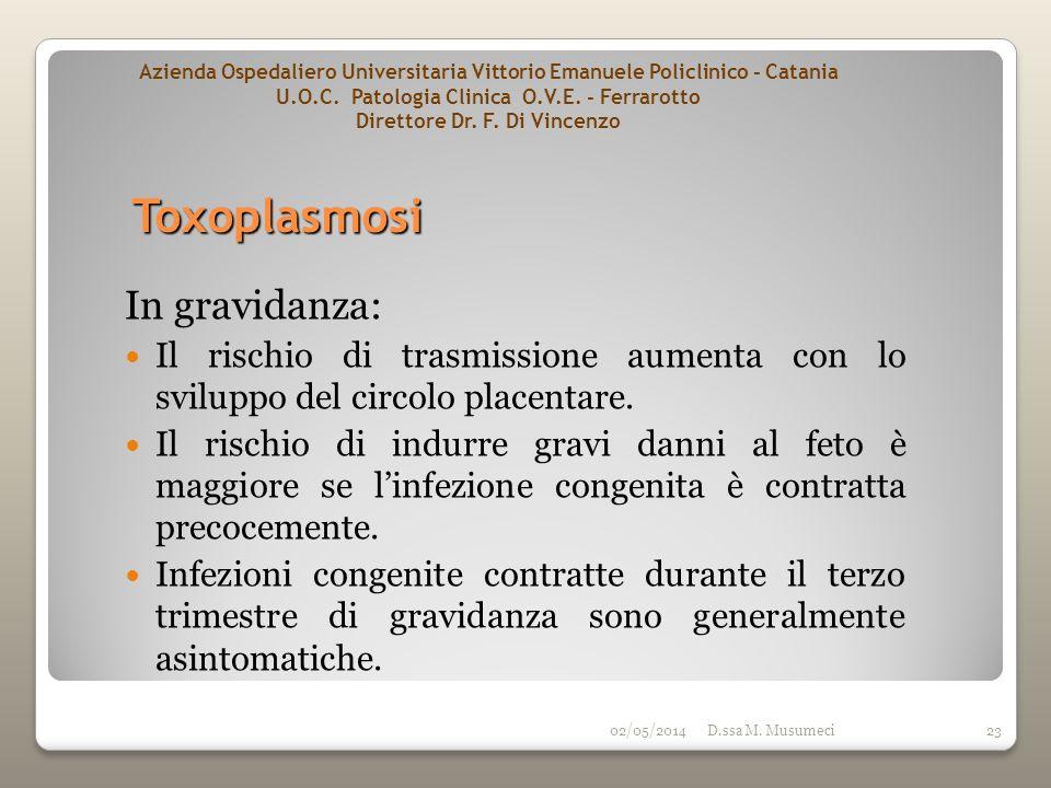 02/05/2014D.ssa M. Musumeci23 In gravidanza: Il rischio di trasmissione aumenta con lo sviluppo del circolo placentare. Il rischio di indurre gravi da
