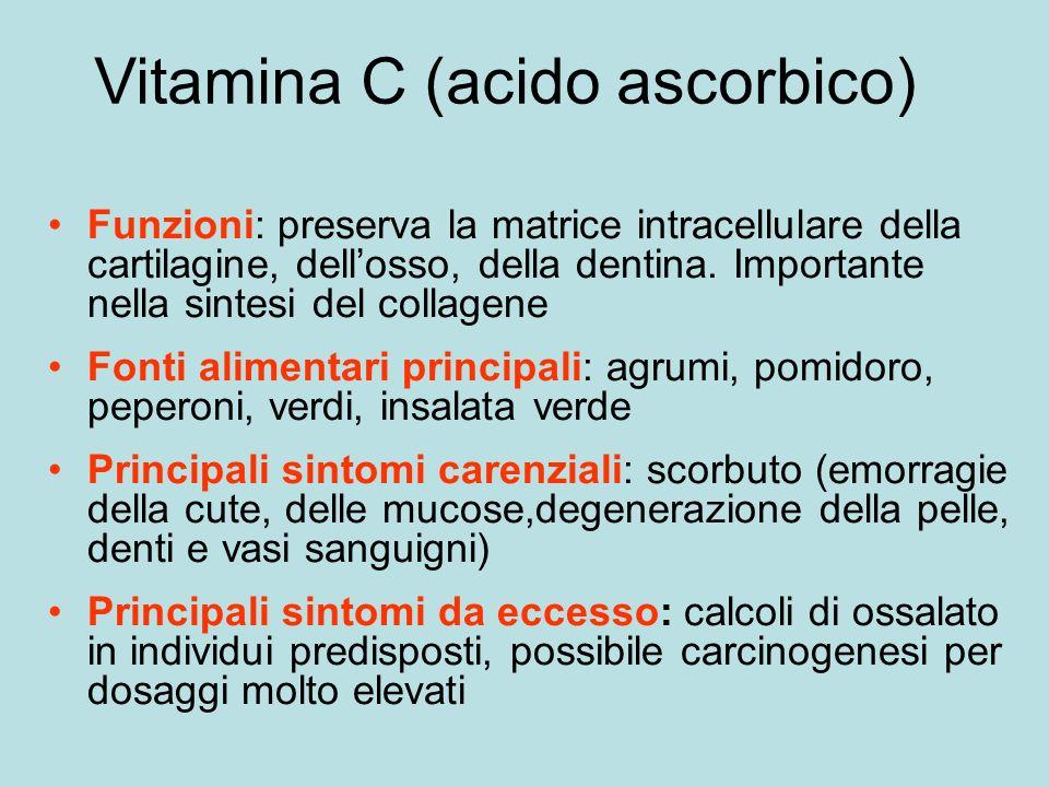 Vitamina C (acido ascorbico) Funzioni: preserva la matrice intracellulare della cartilagine, dellosso, della dentina.