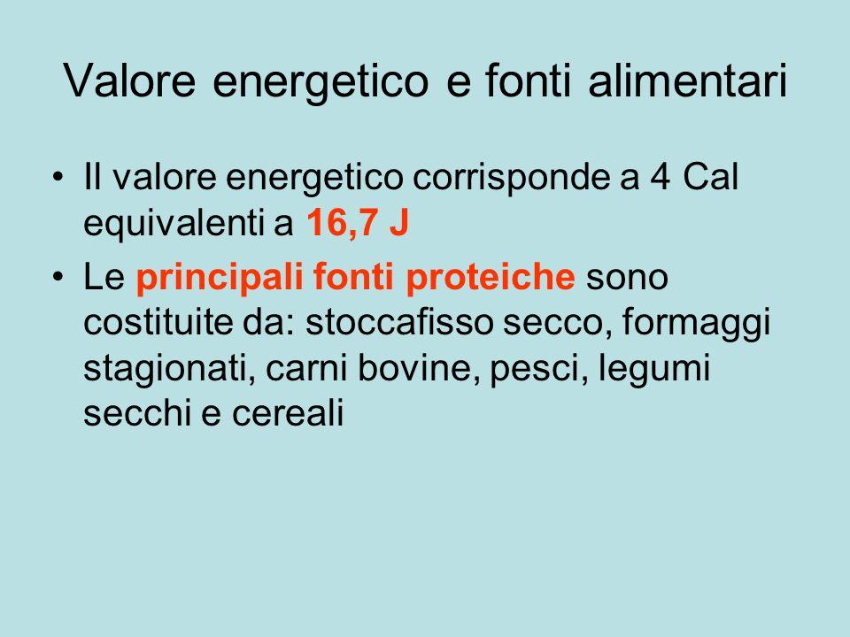 Valore energetico e fonti alimentari Il valore energetico corrisponde a 4 Cal equivalenti a 16,7 J Le principali fonti proteiche sono costituite da: stoccafisso secco, formaggi stagionati, carni bovine, pesci, legumi secchi e cereali