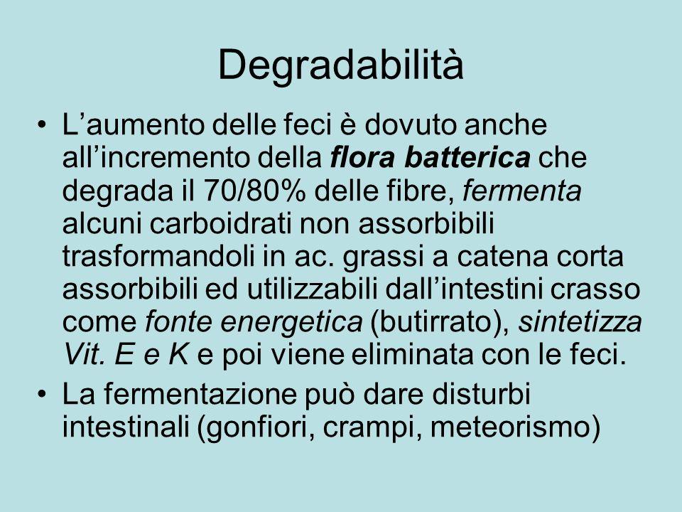 Degradabilità Laumento delle feci è dovuto anche allincremento della flora batterica che degrada il 70/80% delle fibre, fermenta alcuni carboidrati non assorbibili trasformandoli in ac.