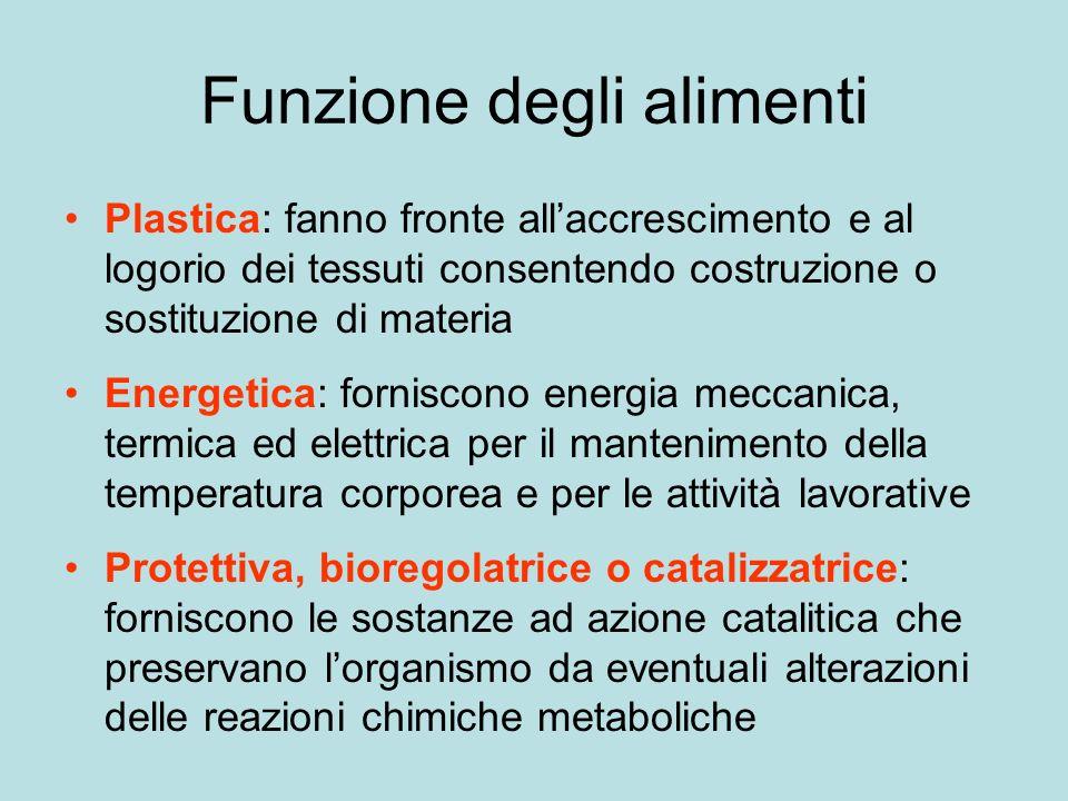 Funzione dei nutrienti Protidi: funzione plastica Glicidi: funzione energetica dinamica Lipidi: funzione energetica termica Vitamine: funzione protettiva Minerali: funzione plastica e protettiva Acqua: funzione plastica
