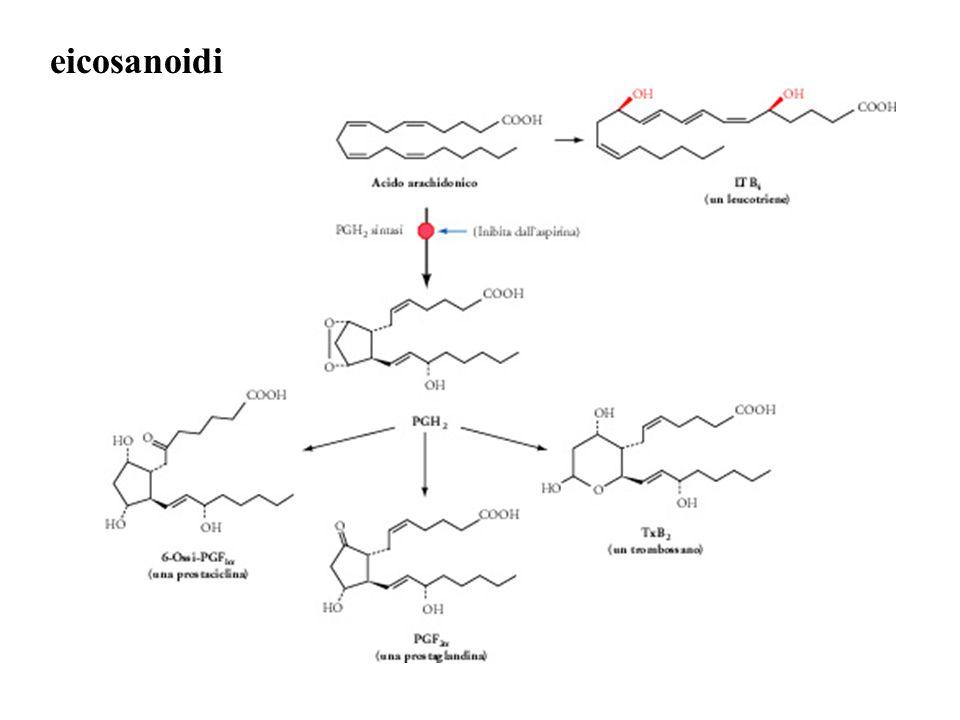 eicosanoidi