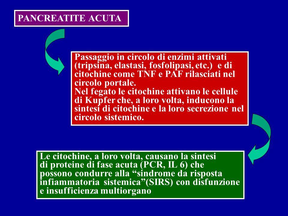 PANCREATITE ACUTA Passaggio in circolo di enzimi attivati (tripsina, elastasi, fosfolipasi, etc.) e di citochine come TNF e PAF rilasciati nel circolo