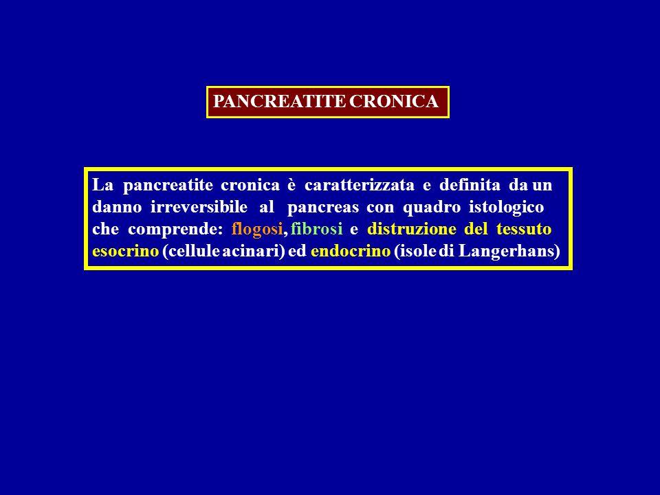 PANCREATITE CRONICA La pancreatite cronica è caratterizzata e definita da un danno irreversibile al pancreas con quadro istologico che comprende: flog