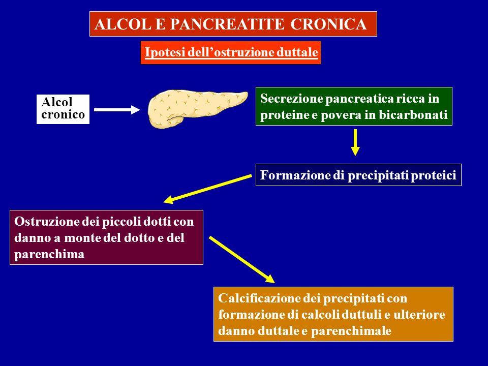 ALCOL E PANCREATITE CRONICA Ipotesi dellostruzione duttale Alcol cronico Secrezione pancreatica ricca in proteine e povera in bicarbonati Formazione d