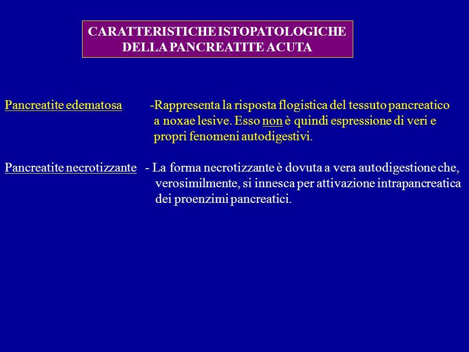 CARATTERISTICHE ISTOPATOLOGICHE DELLA PANCREATITE ACUTA Pancreatite edematosa -Rappresenta la risposta flogistica del tessuto pancreatico a noxae lesi