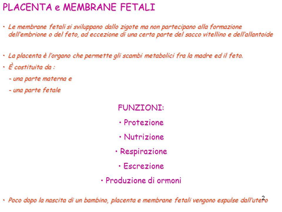 PLACENTA e MEMBRANE FETALI Le membrane fetali si sviluppano dallo zigote ma non partecipano alla formazione dellembrione o del feto, ad eccezione di u