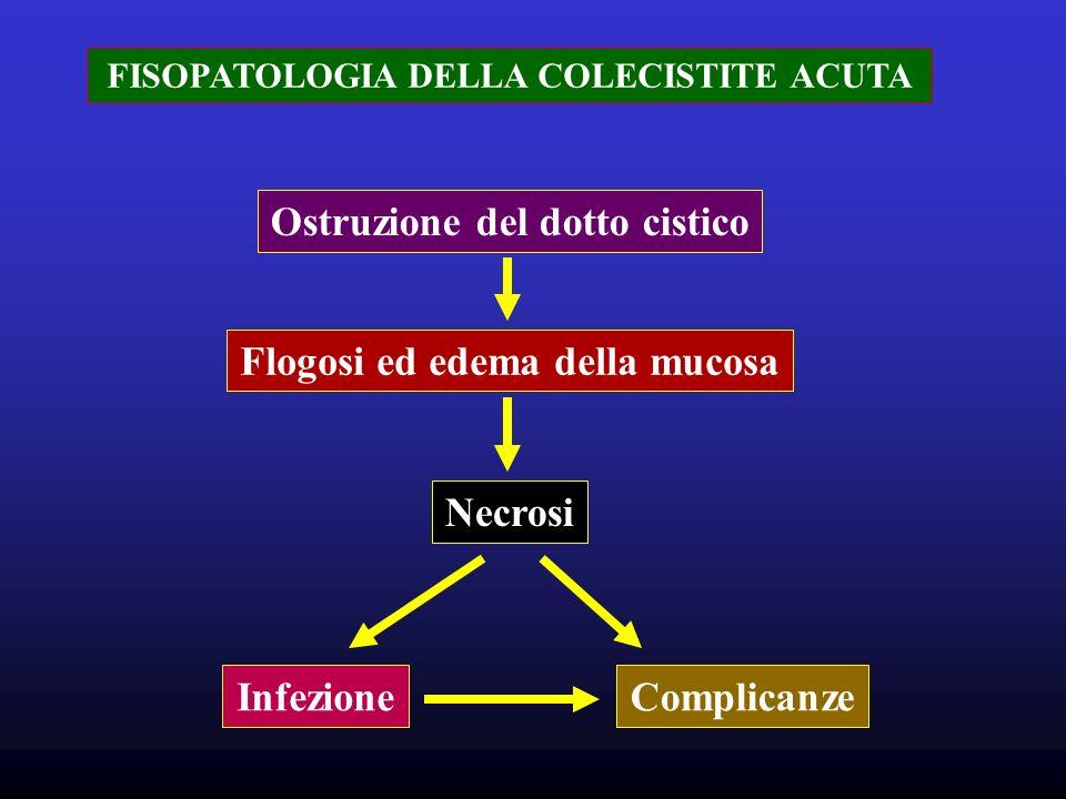 FISOPATOLOGIA DELLA COLECISTITE ACUTA Ostruzione del dotto cistico Flogosi ed edema della mucosa Necrosi InfezioneComplicanze