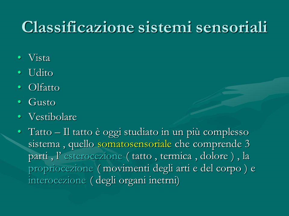Classificazione sistemi sensoriali VistaVista UditoUdito OlfattoOlfatto GustoGusto VestibolareVestibolare Tatto – Il tatto è oggi studiato in un più c