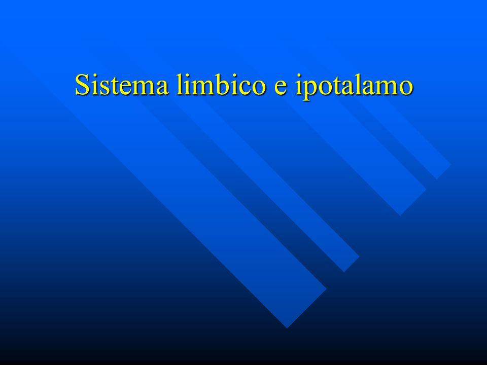 Sistema limbico e ipotalamo