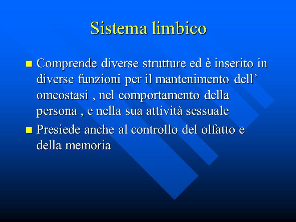 Sistema limbico Comprende diverse strutture ed è inserito in diverse funzioni per il mantenimento dell omeostasi, nel comportamento della persona, e n