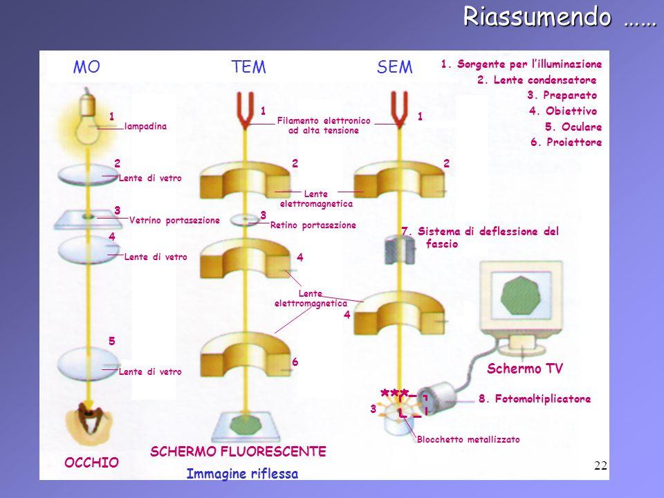 Riassumendo …… MOTEMSEM 1 1 1 1. Sorgente per lilluminazione lampadina Filamento elettronico ad alta tensione 222 2. Lente condensatore 3 3 3 3. Prepa