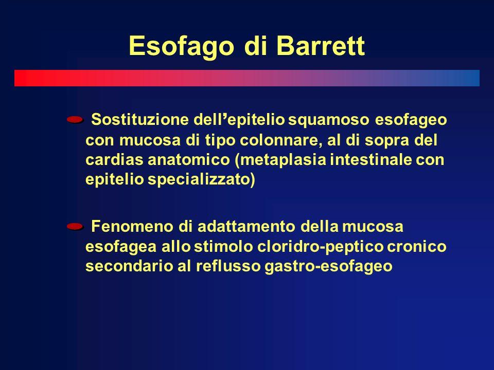 Esofago di Barrett Sostituzione dell epitelio squamoso esofageo con mucosa di tipo colonnare, al di sopra del cardias anatomico (metaplasia intestinale con epitelio specializzato) Fenomeno di adattamento della mucosa esofagea allo stimolo cloridro-peptico cronico secondario al reflusso gastro-esofageo