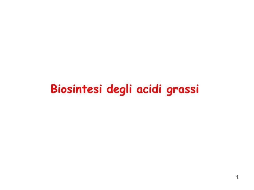 1 Biosintesi degli acidi grassi