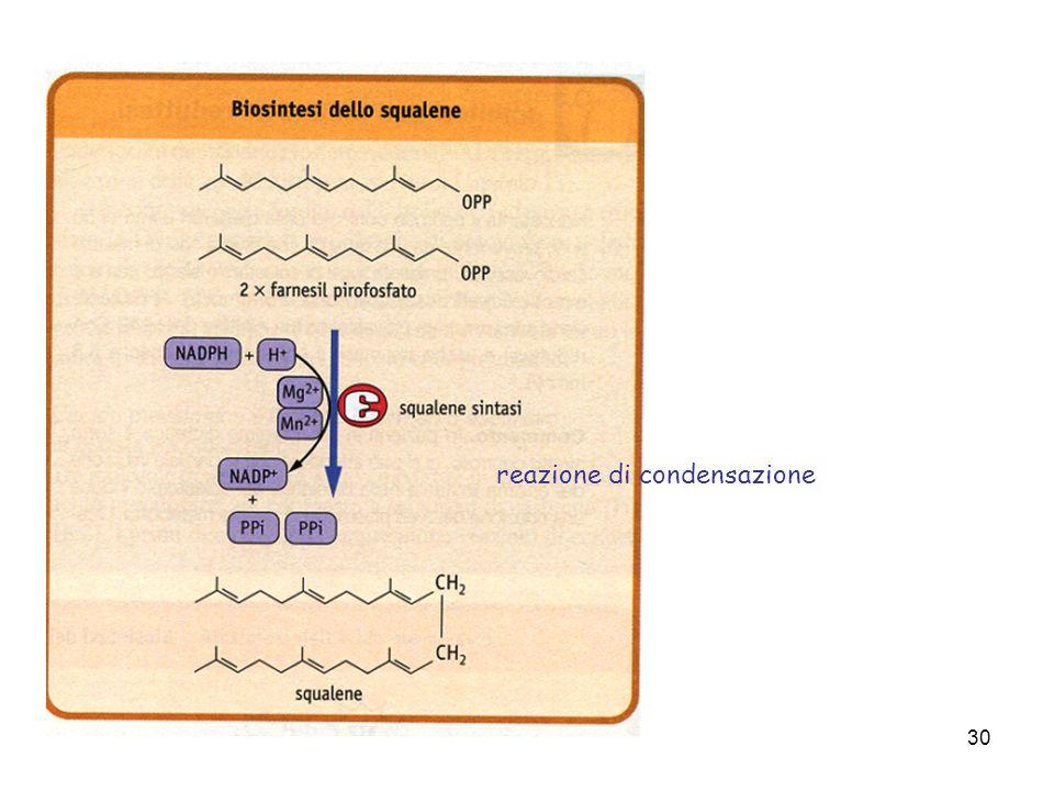 30 reazione di condensazione