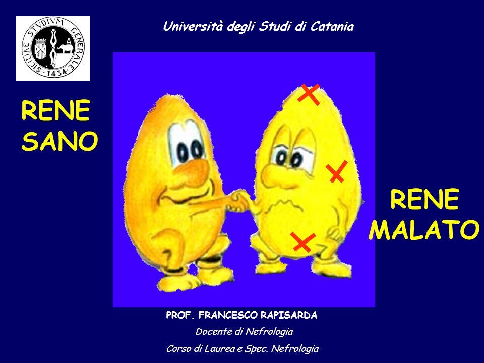 Università degli Studi di Catania PROF.