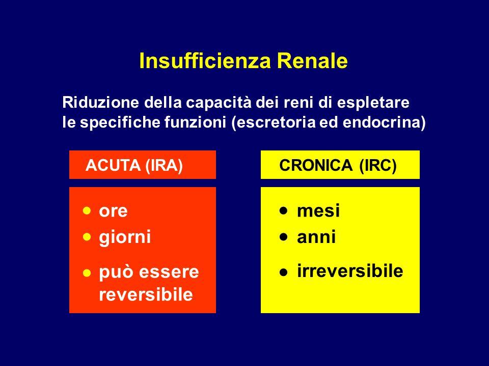 Insufficienza Renale Riduzione della capacità dei reni di espletare le specifiche funzioni (escretoria ed endocrina) ACUTA (IRA)CRONICA (IRC) ore giorni mesi anni può essere reversibile irreversibile