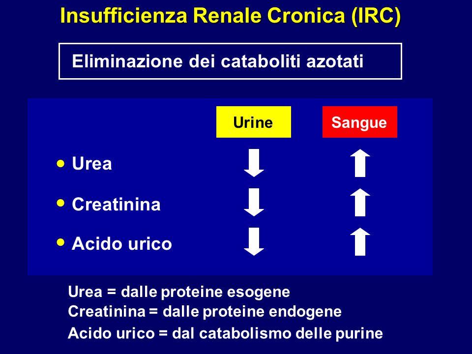 Eliminazione dei cataboliti azotati Insufficienza Renale Cronica (IRC) Urea Creatinina Acido urico UrineSangue Urea = dalle proteine esogene Creatinina = dalle proteine endogene Acido urico = dal catabolismo delle purine
