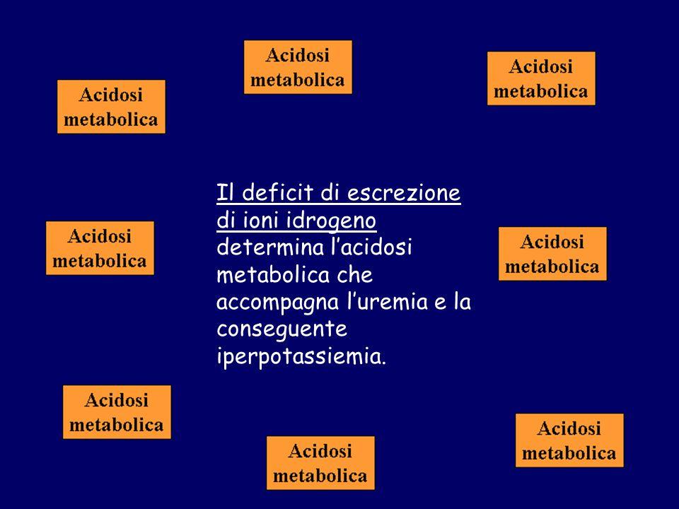 Il deficit di escrezione di ioni idrogeno determina lacidosi metabolica che accompagna luremia e la conseguente iperpotassiemia.