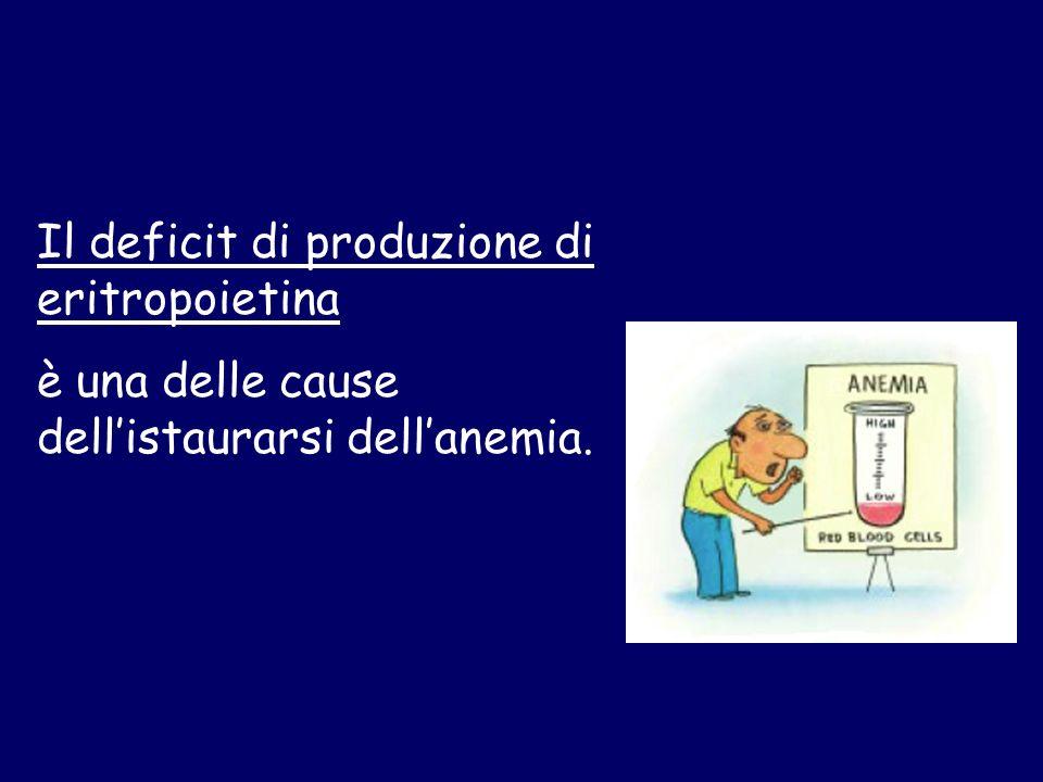 Il deficit di produzione di eritropoietina è una delle cause dellistaurarsi dellanemia.
